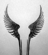 Valkyrie wings tattoo